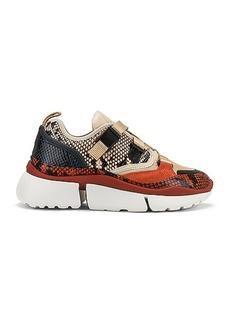 Chloé Chloe Platform Sneakers