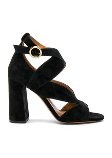 Chloe Suede Graphic Leaves Sandals