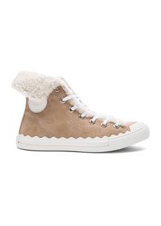 Chloe Suede Kyle Sneakers