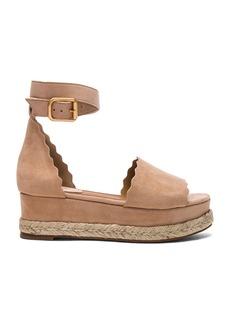 Chloe Suede Lauren Platform Sandals