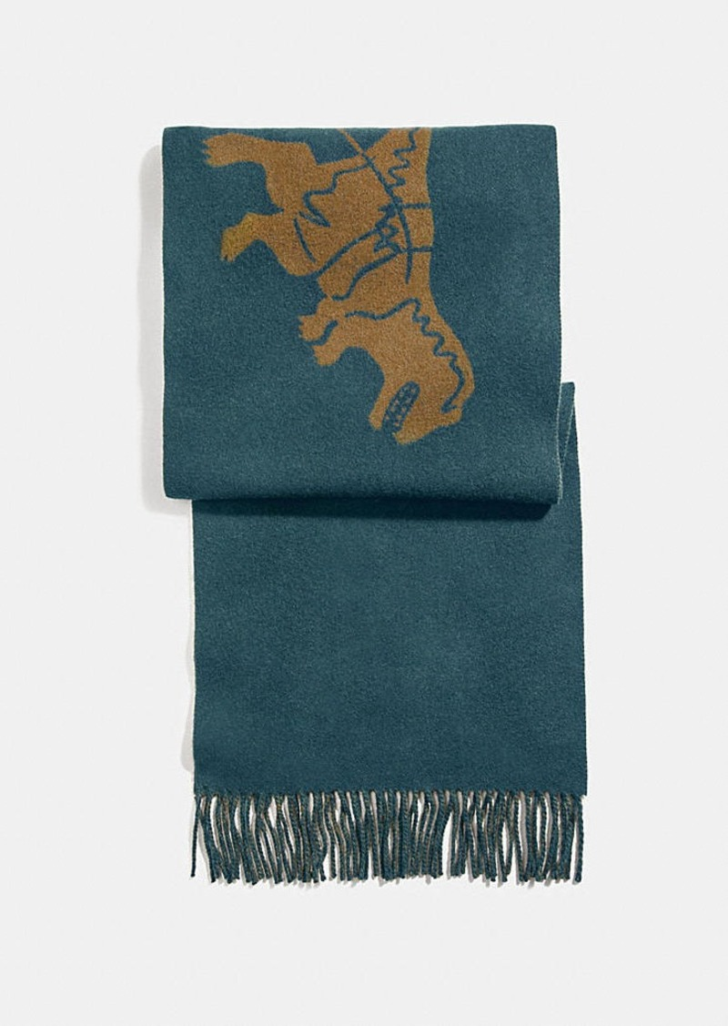 Coach rexy and carriage cashmere scarf