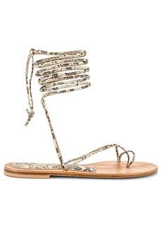 CoRNETTI Arutas Lace Up Sandal