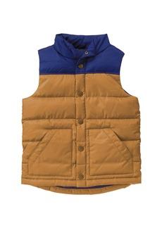 Crazy 8 Little Boys' His Puffer Vest Multi L