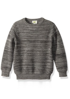 Crazy 8 Little Boys' Long Sleeve Marled Sweater  XS