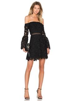 Cynthia Rowley Wild Flower Lace Mini Dress