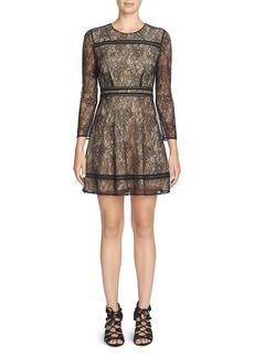 Cynthia Steffe Lauren Lace Dress