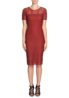 Cynthia Steffe 'Lily' Knit Midi Dress