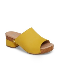 Dansko Maci Mule Sandal (Women)