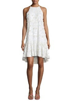 Diane von Furstenberg Kera Sleeveless Floral-Embroidered Dress