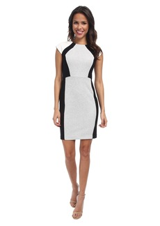 DKNYC Ponte and Small Scale Faux Leather Snake Pieced Dress