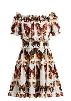 Dolce & Gabbana Butterfly-print cotton poplin mini dress