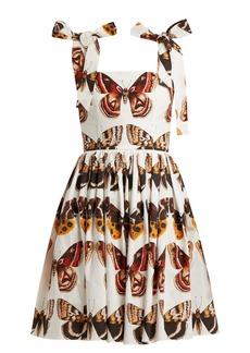Dolce & Gabbana Butterfly-print cotton-poplin mini dress