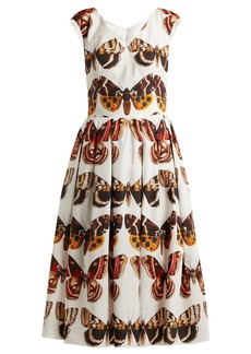 Dolce & Gabbana Butterfly-print pleated cotton dress