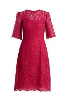 Dolce & Gabbana Cordonetto-lace midi dress