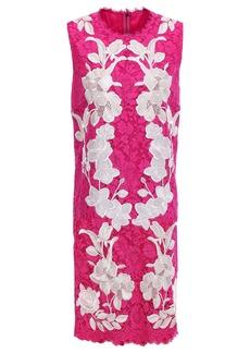Dolce & Gabbana Woman Embroidered Corded Lace Mini Dress Fuchsia