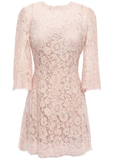 Dolce & Gabbana Woman Flared Cotton-blend Corded Lace Mini Dress Blush