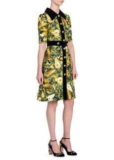 Dolce & Gabbana Floral Brocade Velvet Trim Dress