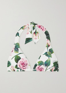 Dolce & Gabbana Floral-print Halterneck Bikini Top