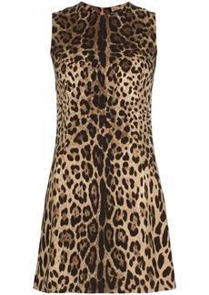 Dolce & Gabbana leopard print classic shift mini dress
