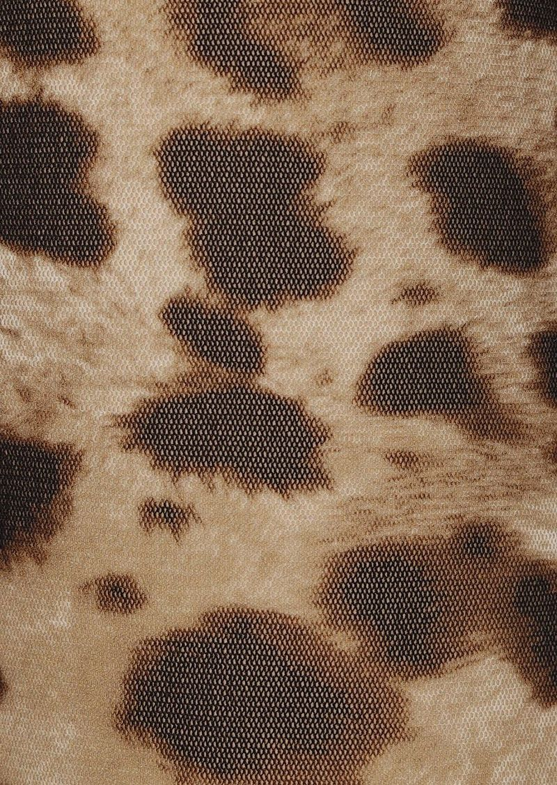 Dolce & Gabbana Leopard Print Tulle Tights