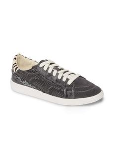 Dolce Vita Nino Sneaker (Women)