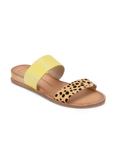 Dolce Vita Payce Slide Sandal (Women)