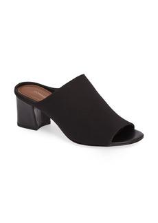 Donald J Pliner Ellis Block Heel Slide Sandal (Women)