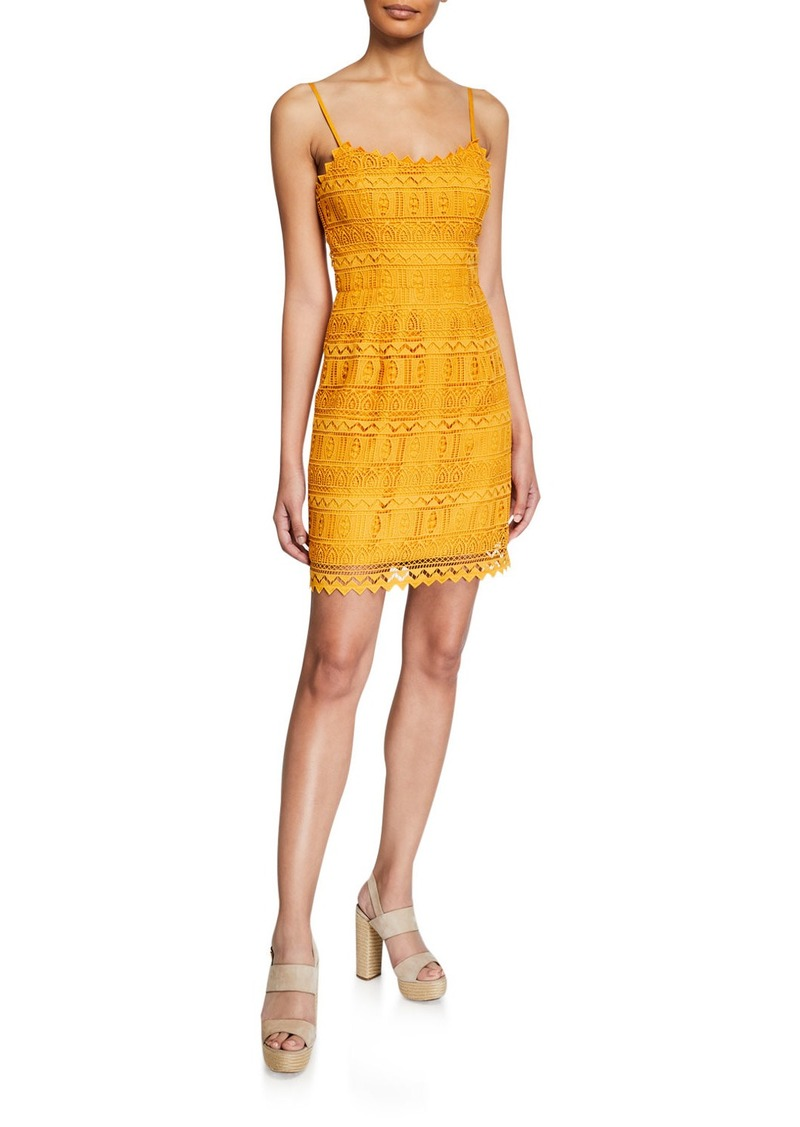 Dress The Population Gwen Spaghetti-Strap Mini Lace Dress