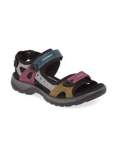 ECCO Offroad Sandal (Women)