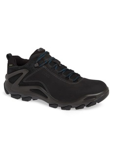 ECCO Terra Evo GTX Low Hiking Shoe (Men)