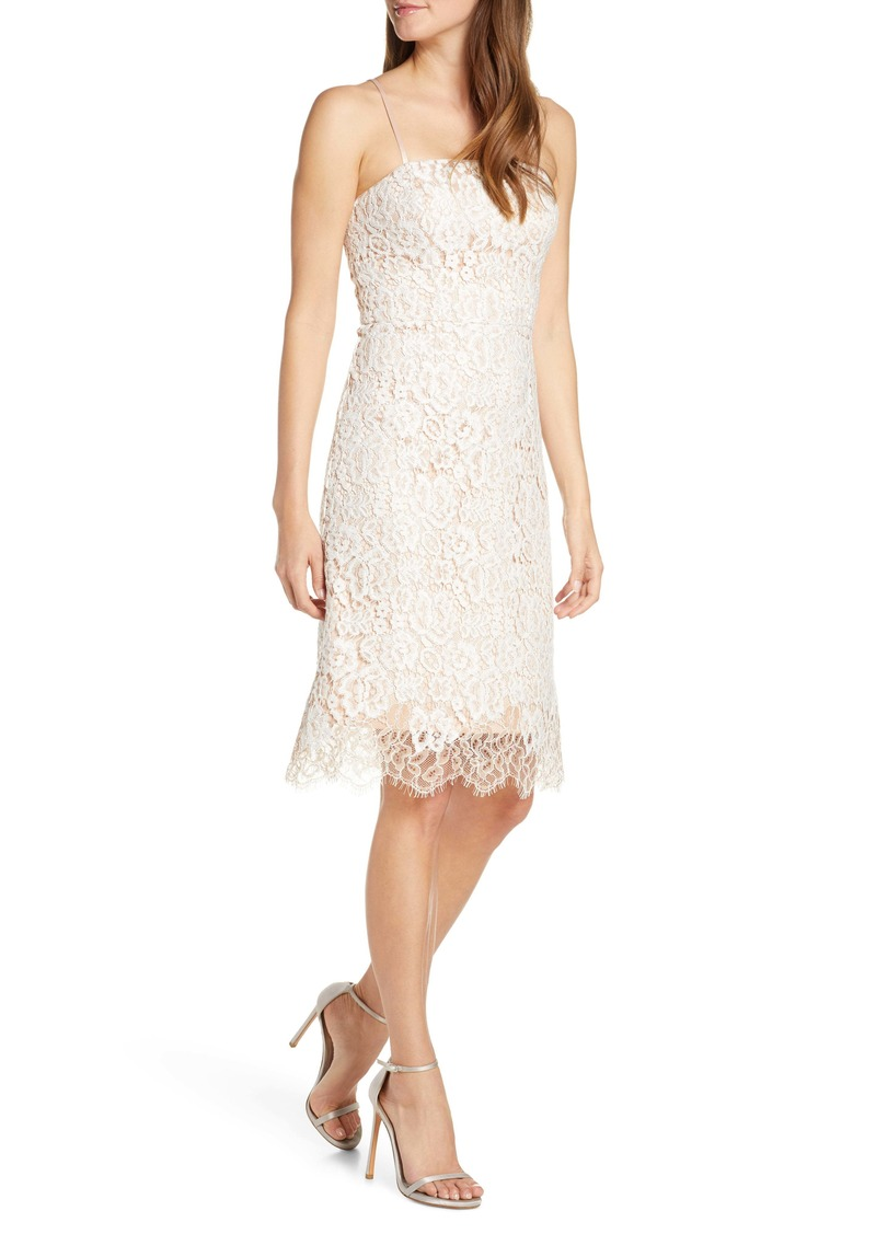 Eliza J Lace Cocktail Dress