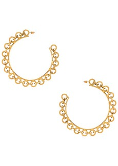Elizabeth Cole Logan Hoops