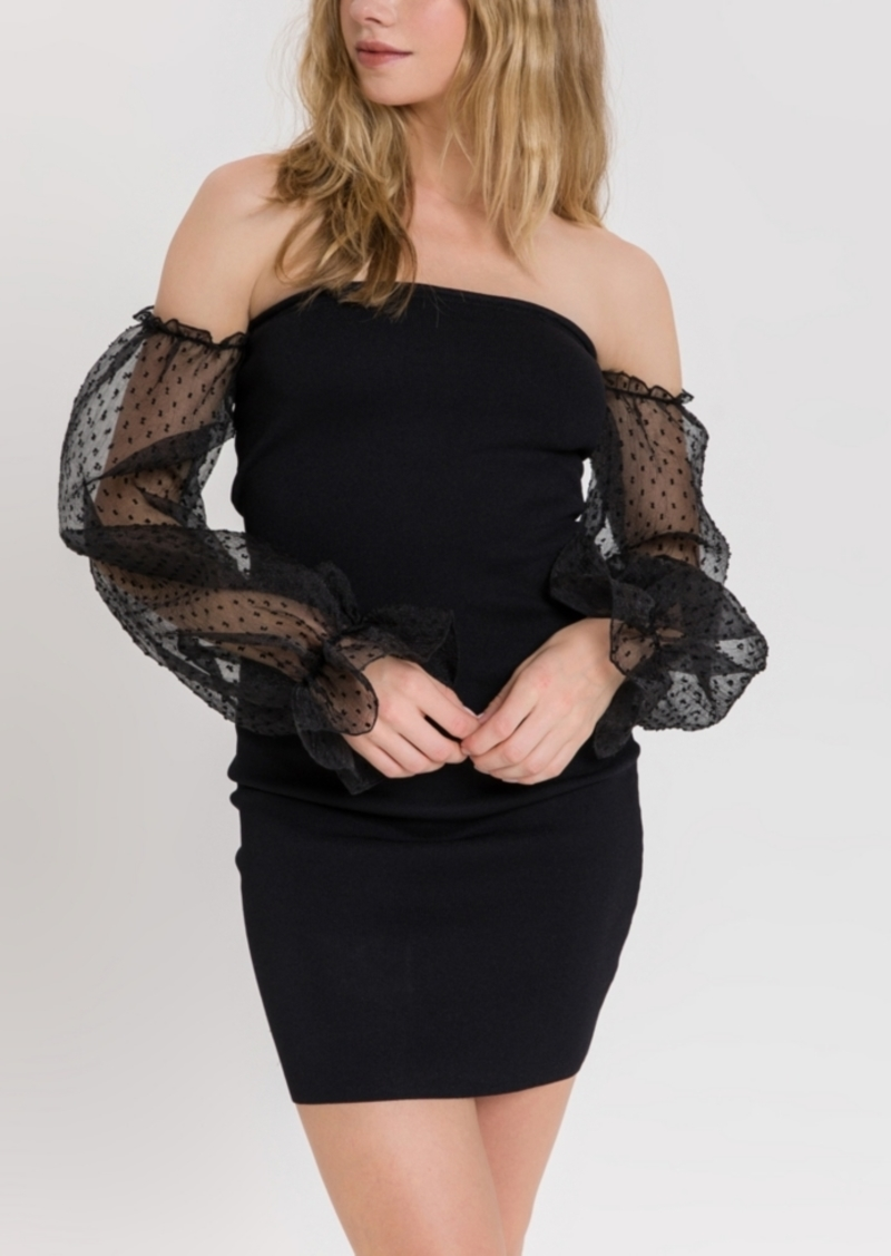 Endless Rose Knit Dress with Sheer Sleeves