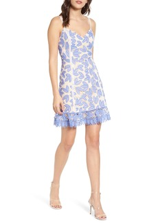 Endless Rose Lace Fit & Flare Dress