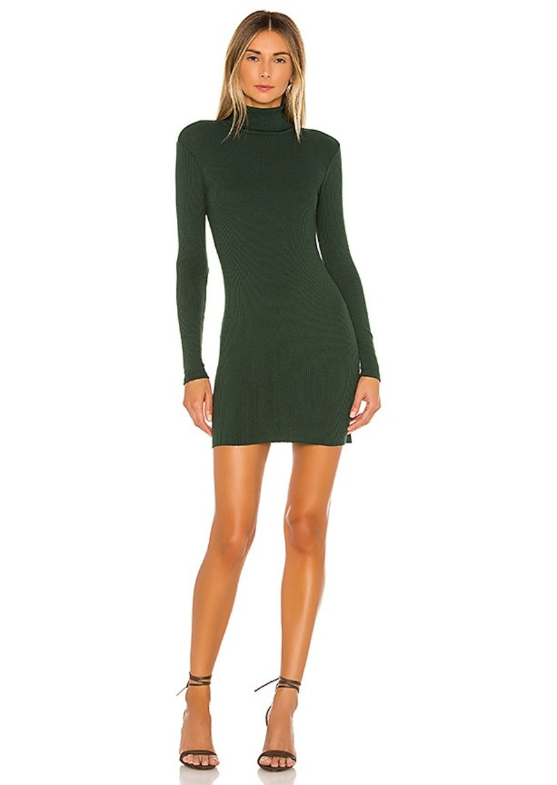 Enza Costa Rib Turtleneck Mini Dress