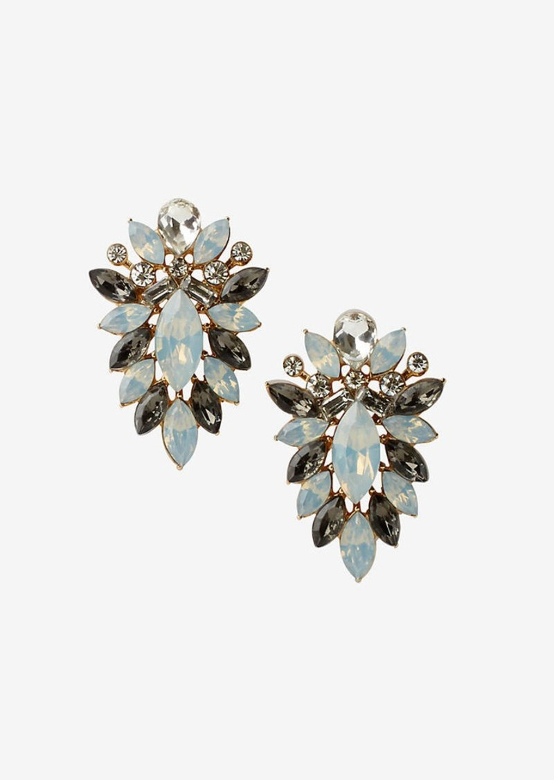Express Mixed Stone Statement Earrings