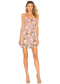 For Love & Lemons Posy Embroidery Mini Dress