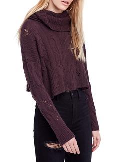 Free People Shades of Dawn Crop Sweater