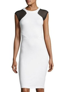 French Connection Eso Viven Paneled Sheath Dress