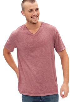Gap Burnout V T-Shirt