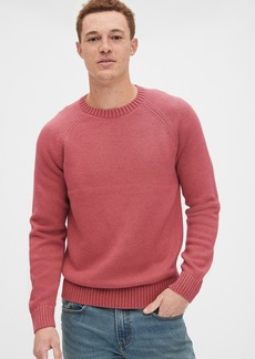 Gap Crewneck Raglan Sweater