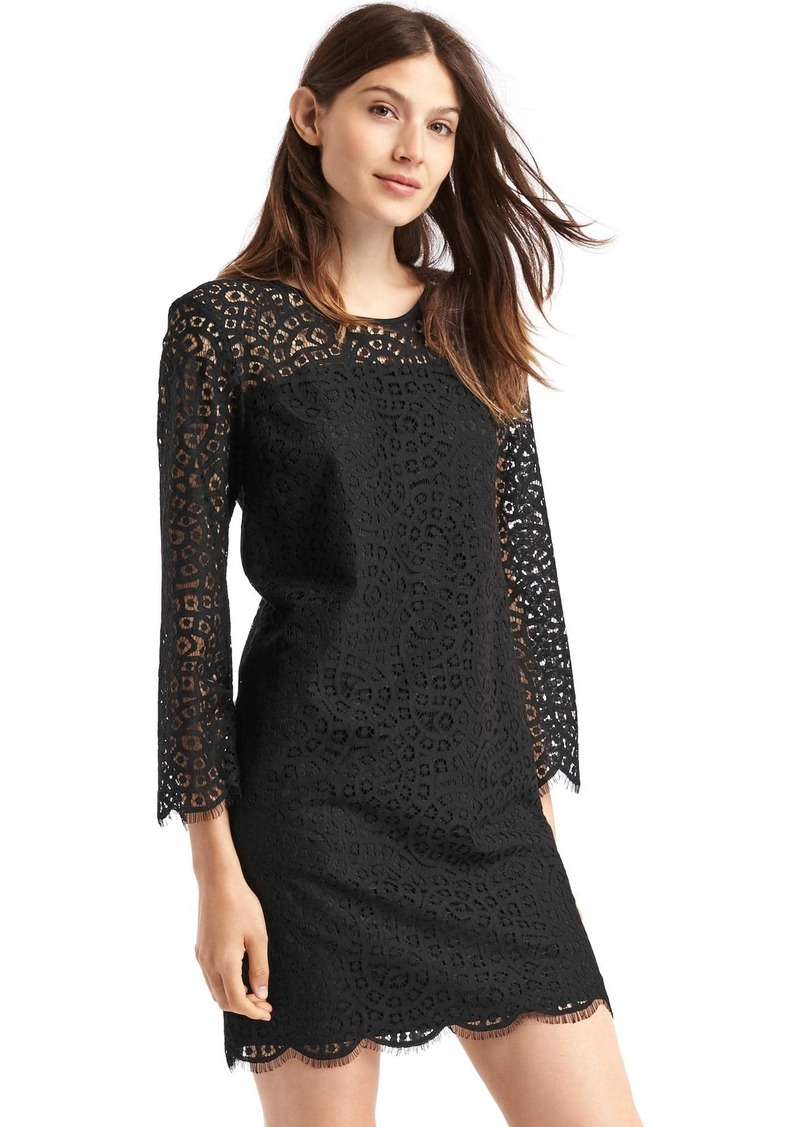 Gap Crochet lace shift dress