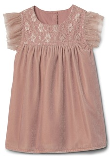 Gap Lace yoke velvet flutter dress