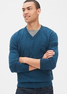 Gap V-Neck Sweater in Merino Wool