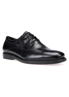 Geox Brayden 2Fit ABX Plain Toe Derby (Men)