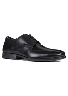 Geox Calgary Plain Toe Derby (Men)