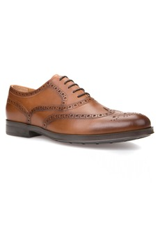 Geox Hilstone 2Fit 2 Wingtip Oxford (Men)