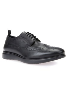 Geox Winfred 3 Wingtip (Men)