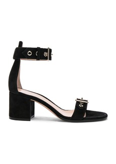 Gianvito Rossi Suede Buckle Detail Sandals