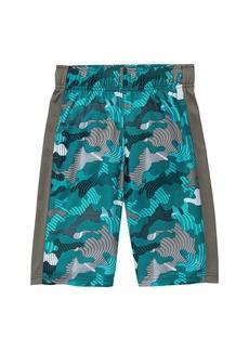 Gymboree Little Boys' Active Shorts  S
